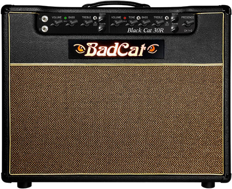 Bad Cat Black Cat 30 image