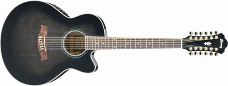 Ibanez AEL2012E Transparent Black Sunburst image
