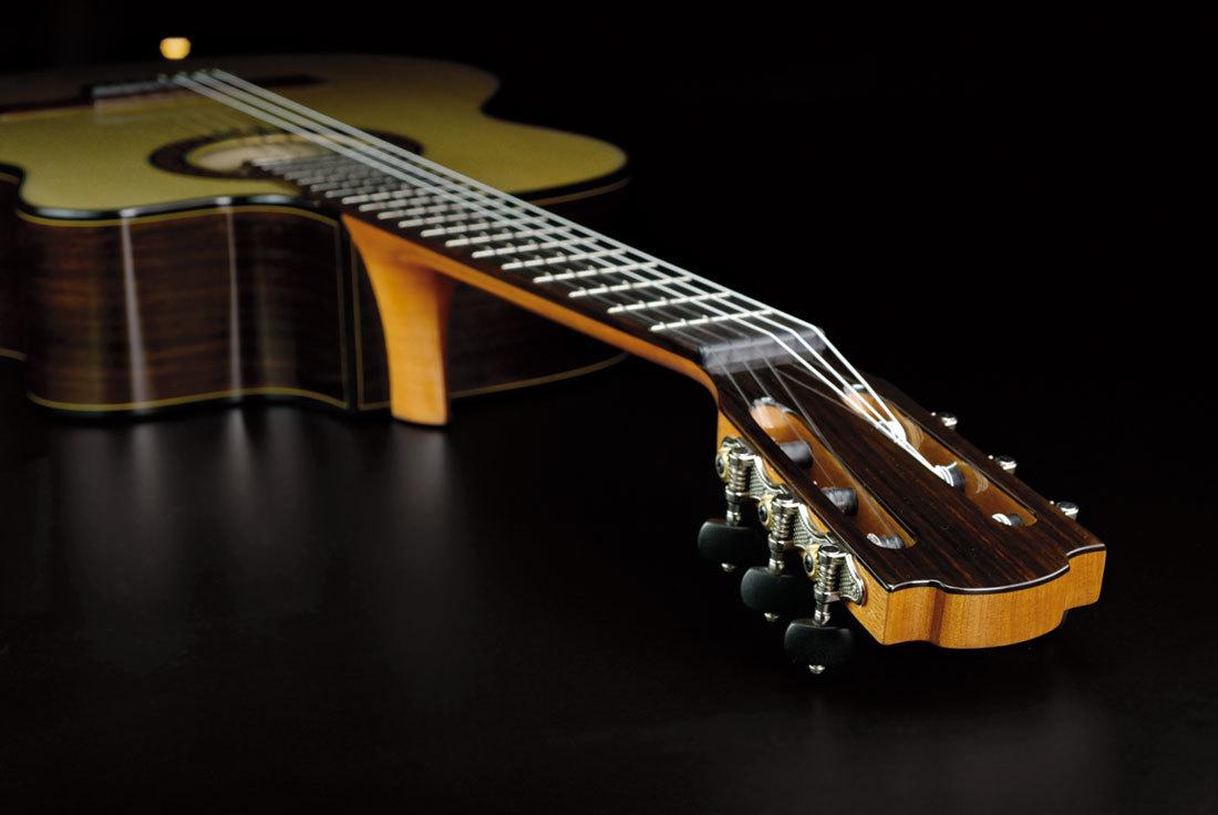 можете заказать картинки с классическими гитарами рисунки графика крайне